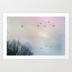 the flight of the goose Art Print by hannes cmarits (hannes61) - $17.00