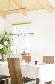 Scandinavian Nordic Interior Winter Decoration Table Plant