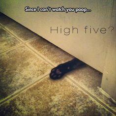 High five please??