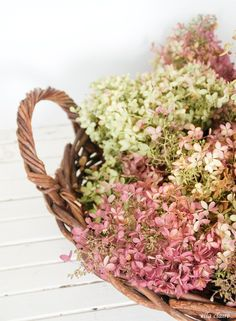 Harvesting, drying, arranging Hydrangeas with Ella Claire