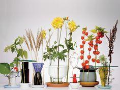 chris kabel// hidden vase