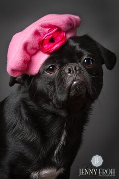 Poor Wittle Pugs!! The 30 Unhappiest Etsy Pug Models