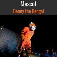 Bengal Dancers Idaho State University | Mascot: Benny the Bengal