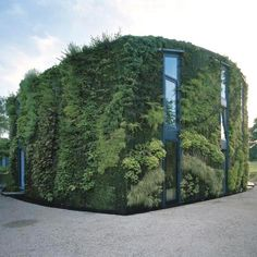 this house near brussels by architects samyn and partners has a glass wall at the front and a plant-covered wall by french botanical artist patrick blanc at the back.