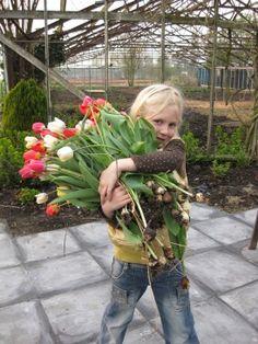 babette-met-tulpen