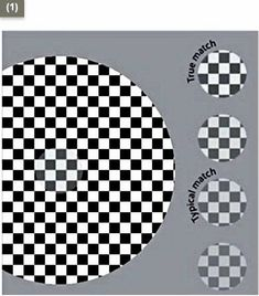 Victoria Skye Cafe Wall Optical Illusion 1 Your Eyes Are Playing