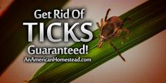 Get Rid Of Ticks – Guaranteed!   An American Homestead – Living Off Grid in the Ozark Mountains