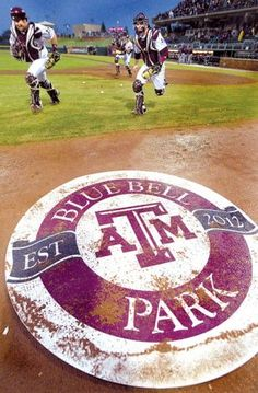 Blue Bell Park in Aggieland!