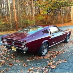 1967 Ford Mustang Fastback, one saved from having an Eleanor kit slapped on. 1967 Mustang, Ford Mustang Boss, Ford Mustang Fastback, Mustang Cobra, Mustang Hatchback, S550 Mustang, Classic Mustang, Ford Classic Cars, 1967 Shelby Gt500