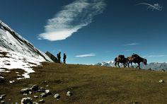 Trekking in Nepal - Two Friends by Mohan Duwal