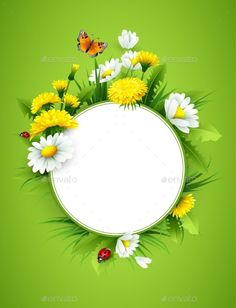 Buy Fresh Spring Background by Vik_Y on GraphicRiver. Fresh spring background with grass, dandelions and daisies. Studio Background Images, Background Design Vector, Background For Photography, Beautiful Art Pictures, Beautiful Photos Of Nature, Framed Wallpaper, Wallpaper Backgrounds, Flower Frame, Flower Art