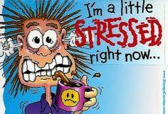 stress :)