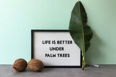 Paris 14eme, Deco, Home Projects, Palm Trees, Life Is Good, Green, Home, Wall, Palm Plants