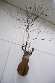 _Untitled_, by MyeongBeom. Deer Taxidermy, Tree - Installation 300 x 300 x 450 cm