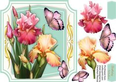Lovely Blush Irises and Butterfly s  on Craftsuprint designed by Ceredwyn Macrae - a lovely card with Irises and butterfly's a lovely card has one greeting tags and a blank one ,  - Now available for download!