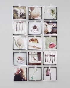 Another lovely collage of photos.  Kari Herer (via Twig home).