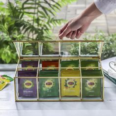 NCYP Glass Terrarium Box Tea Coffee Bag Storage Organizer image 1 Terrarium Containers, Glass Terrarium, Terrarium Ideas, Terrariums, Planter Ideas, Frame Display, Display Case, Tea Bag Storage, Box Storage