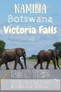 Namibia, Botswana and Victoria Falls: Ultimate self drive road trip itinerary and route Okavango Delta, African Holidays, Chobe National Park, Africa Destinations, Les Continents, Self Driving, Africa Travel, Travel Around The World, Travel Inspiration