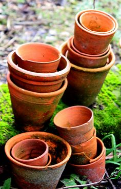 garden pots | Michelle Lancaster | Flickr