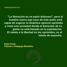 #Frase Tips, Paulo Freire, Frases, Subsistence Agriculture, Natural Farming, History Of Agriculture, Pest Control, Natural Resources, Irrigation
