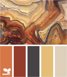 mineral autumn tone color palette. orange, brown, sawdust, cream, red, yellow hues.