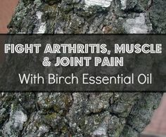 "If you suffer from aches and pains, learn how to make a tried and true ""Arthritis Buster"" using Birch essential oil for arthritis, muscle and joint pain."
