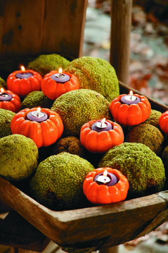 Amazing votive candles placed inside of gourds.