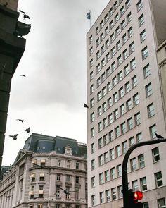 """""""Esta ternura y estas manos libres, ¿a quién darlas bajo el viento?"""" #cortazar #juliocortazar #urbanjungle #instapic #instaphoto #instashot #greyday #instamoment #instamood #birds #dove #pigeon #paloma #downtown #architecture #arquitectura #building..."""