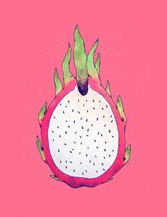 Dragon Fruit Art Print by Nayla Smith - X-Small Dragon Fruit Drawing, Fruits Drawing, Dragon Art, Logo Dragon, Dragon Illustration, Fruit Illustration, Fruit Sketch, Fruit Logo, Fruit Photography