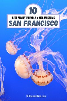 Are you looking for the best family-friendly museums in San Francisco? These 10 are perfect for kids of all ages and will keep your entire family engaged during your vacation. My top picks include the California Academy of Sciences, Exploratorium, and others! San Francisco With Kids, San Francisco Museums, Friends Family, Cool Kids, California, Vacation, Top, Vacations, Holidays Music