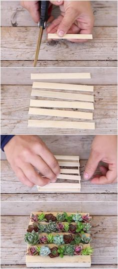 Make the Cutest Succulent Mini-Pallet EVER Out of Popsicle Sticks via @vanessacrafting