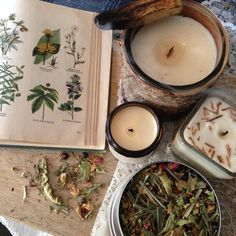 Combination Skin Steam JUNIPER & LEMONGRASS Herbal Botanical Facial Steam Multi Use Strawberry Leaves, Facial Steaming, Body Is A Temple, Skin Elasticity, Combination Skin, Skin Tips, Lemon Grass, Herbalism, The Cure