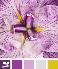52 Ideas Bathroom Yellow Floor Design Seeds For 2019 Design Seeds, Colour Schemes, Color Combos, Color Patterns, Colour Palettes, World Of Color, Color Of Life, Hue Color, Find Color