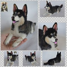 Custom Needle felted Dog Siberian Husky Realistic by WoolArtToys