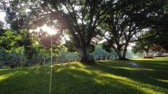 Areas verdes en #careva
