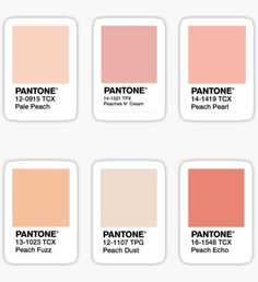 Pantone stickers featuring millions of original designs created by independent artists. White or transparent. Orange Aesthetic, Aesthetic Colors, Aesthetic Vintage, Aesthetic Pictures, Aesthetic Pastel Wallpaper, Aesthetic Wallpapers, Colour Pallete, Just Peachy, Aesthetic Stickers