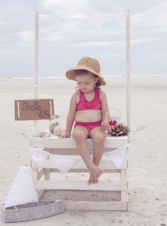 beachy seashells pics | Everything Beachy / She sells seashells by the seashore :)