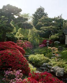 Shofuso-Japanese Garden in Fairmount Park