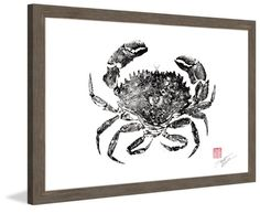 Rock Crab - Marmont Hill