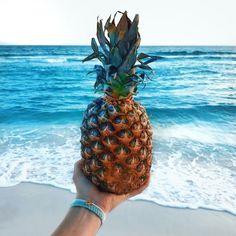 Stand tall like a pineapple x beachwear, swimwear, summer vibes, pineapple Beach Aesthetic, Summer Aesthetic, Water Aesthetic, Aesthetic Videos, Aesthetic Food, Thing 1, Living At Home, Beach Photography, Beach Bum