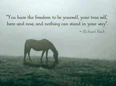 """""""You have the freedom to be yourself, your true self, here and now, and nothing can stand in your way."""" ~ Richard Bach"""