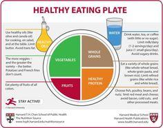 Estas son las recomendaciones de Harvard para comer sano y no engordar