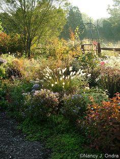 The side garden in October; Nancy J. Ondra at Hayefield