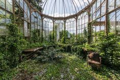 Luxuria by Romain Veillon || Abandoned greenhouse lost somewhere in Belgium overgrown by vegetation
