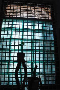 Мое окно наизнанку – разве это не экран? Я смотрю сквозь него то на мир, мне сейчас не доступный, то на приключения персонажей в коридорах и палатах, где меня нет.