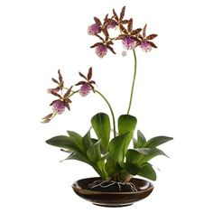 Add a touch of floral elegance to your credenza or side table with this lovely faux orchid arrangement, nestled in a ceramic bowl.    Pr...