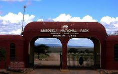 Amboseli National Park: The Best Place in Africa to see Elephants #travel #Kenya #thingstodo