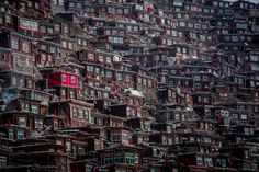 Photo: In the Midst of Monks Credit: © Wan Shun Luk. All rights reserved. Location of Photo: Sertar County, China