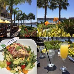 This was the perfect #California #Sunday afternoon! #Brunch #beach and sunshine! I Cali  . . #sun #sunshine #palmtrees #mimosa #salad #nofilterneeded #nofilter #socal #restaurant #resort #visualsoflife #flashesofdelight #thehappynow #nothingisordinary #live #livelife #livelifehappy #yum #food #ilovemylife #wishyouwerehere #hunterphoenix