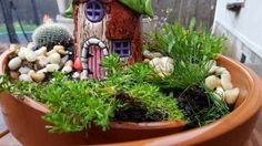 A closeup of the fairy house in its broken pot garden. Photo by J&J